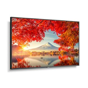 """NEC 55"""" MA-Series Large Format (60005056)"""