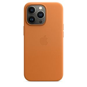 APPLE iPhone 13 Pro Le Case Gldn Br (MM193ZM/A)