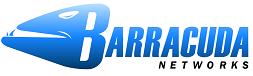 BARRACUDA Encrypted Backup 8090 IR, 1 Mth (BEBIS8090A-H)