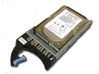 IBM 300GB HOT SWAP 15K SAS HDD (43X0805)