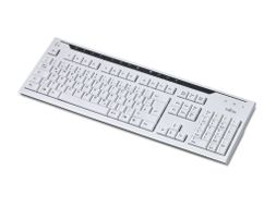 FUJITSU Keyboard Standard RUS(ENGLISH) (S26381-K500-L115)
