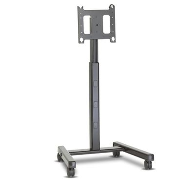 Mount Flat Panel Mobile Cart
