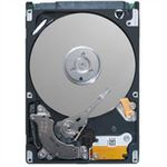 DELL Harddisk 250-GB Sata 3,5""