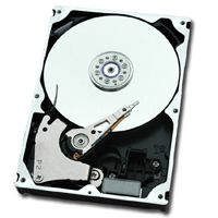 DX8090 S2 HD NLSAS 2TB 7.2 3.5 GR INT