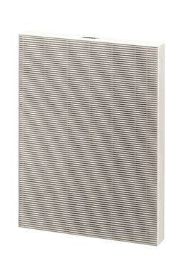 EPA FILTERS AIR CLEANER FELLOWES BIG