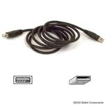 BELKIN USB A EXTENSION CABLE  NS