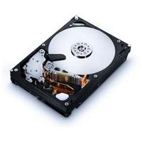 2TB HITACHI HDD F/ NON-IO INTENSIVE PURPOSES