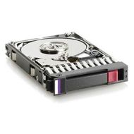 Hewlett Packard Enterprise HD 2TB 6G 7.2K 3.5 SAS P2000 (605475-001)