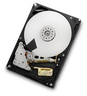 ULTRASTAR 7K4000 2TB SATA 3.5IN 7200RPM HUS724020ALE640    IN INT