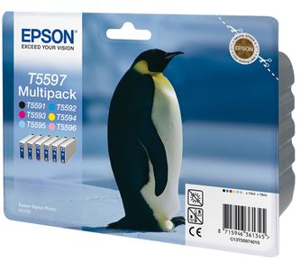 EPSON Ink Cart/ Multipack f Stylus Photo RX700 (C13T55974010)