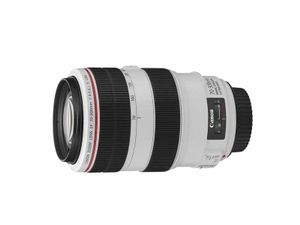 CANON EF 70-300mm 1:4-5,6 L