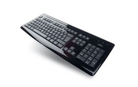 FUJITSU KB SLIM MF PIANO BLACK USA/LT (S26381-K370-L248)