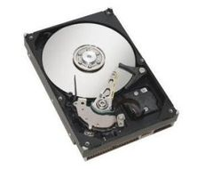HDD SAS 300 GB, 15k, CELSIUS M440/ M450,  V830, R540