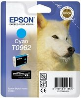 Cyan Ink Cartridge (T096)