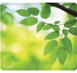 FELLOWES Earth Series Mouse pad- Blade