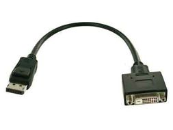 Display Port/DVI Adapter Cable