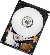WESTERN DIGITAL Travelstar 5K500.B 320GB HDD (HTS545032B9A300)