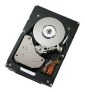 300GB SAS 10K RPM SFF 6GB HDD/HOT PLUG/ DRIVE SLED MOUNTED