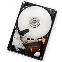 IBM 2Tb SATA E-DDM 7.200Rpm HDD for DS3950 (59Y5536)