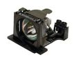 OPTOMA Replacement Projector Lamp