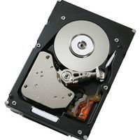 LENOVO 250Gb Hot-Swap SATA II HDD F/S Spare (43W7598-FSS)