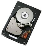 IBM 900GB 10K 2.5 HDD Til DS3524 (81Y9915)