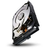 SEAGATE CONSTELLATION CS 1TB SATA 3.5IN 7200RPM 6GB/S 64MB IN