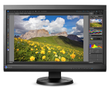 "EIZO 23"" COLOREDGE CS230, BLACK DP/ DVI-I/ HDMI  EIZO EX1 CALI     IN MNTR"