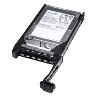 DELL 3TB Near Line SAS 6Gbps 7_2k 3_5 HD Hot Plu (400-23135)