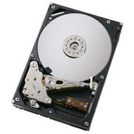 Harddrive 300GB SAS