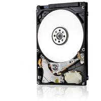 Travelstar 7K1000 1TB HDD