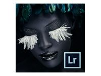 Lightroom - ALL - Multiple Platforms - Swedish - Renewal Upgrade Plan - 2Y - 1 USER - 1+ - 24 Months