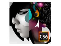 ADOBE TLPE/CS6 Adobe Design Std 6 MP/ FIN/ 1USER (65163301AE01A00)