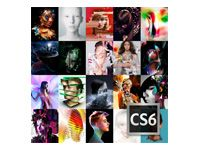 ADOBE CS6 Master Collection - 6 - Multiple Platforms - International English - AOO License - 1 USER - 1+ - 0 Months (65166816AE01A00)