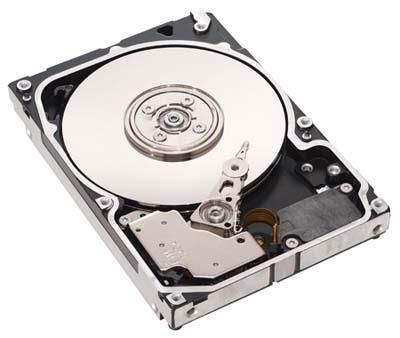 HDD SAS 6G 300GB 10K HOT PL