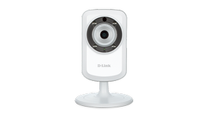 Wireless N Sound Detection Camera