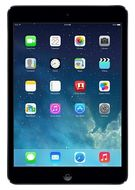 Apple iPad mini with Retina display_ Wi-Fi/4G_ 32GB_ Space Gray (ME820KS/A)