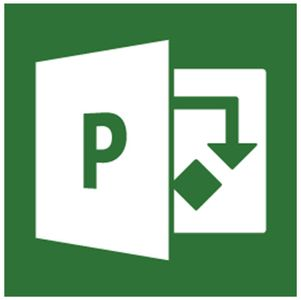 MICROSOFT PROJECT 2013 STD 1 LICS SW (076-05129)