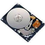 FUJITSU HD SATA 6G 250GB 7.2K (S26361-F3710-L250)
