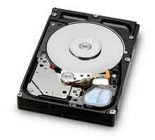 Ultrastar C15K600 450GB HDD