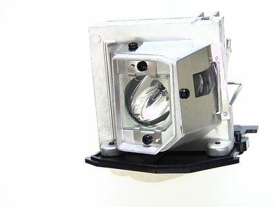 GO LAMPS for 725-10193 (GL669)