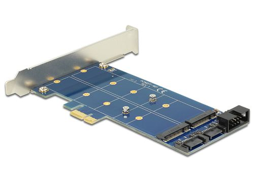 PCI Express Card > 2 x internal M.2 NGFF