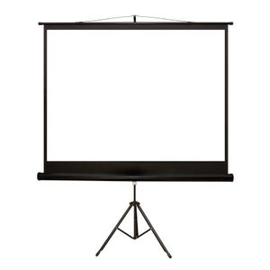 4World Projection screen with stand 170x127 (84'', 4:3) Matt White (08145)