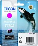 EPSON Ink Cart/ T7603 Vivid