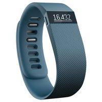 FITBIT Charge Slate Large (FB404SLL)