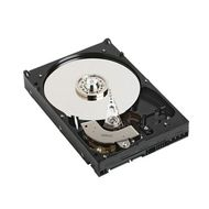 HDD 500GB 7.2K RPM SATA 3GBPS 2.5IN CABLED KIT INT