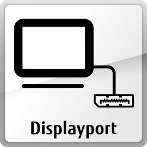 FUJITSU DISPLAYPORT EXTENSION CARD OUTPUT 3-MONITOR-SUPPORT (S26361-F2391-L210)