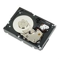 DELL HDD SC200 4TB NL SAS 6GB 7.2K 3.5 HDD - KIT INT (400-AAIG)