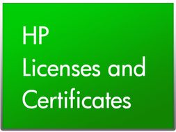 Hewlett Packard Enterprise SGT CLSTRSTR 24/7 4YR SWORT                                  IN SVCS (P1M79A)