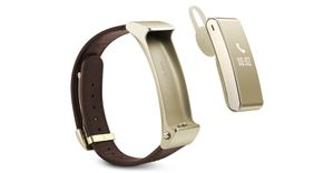 SMART BAND B2 (BLUETOOTH GOLDEN)